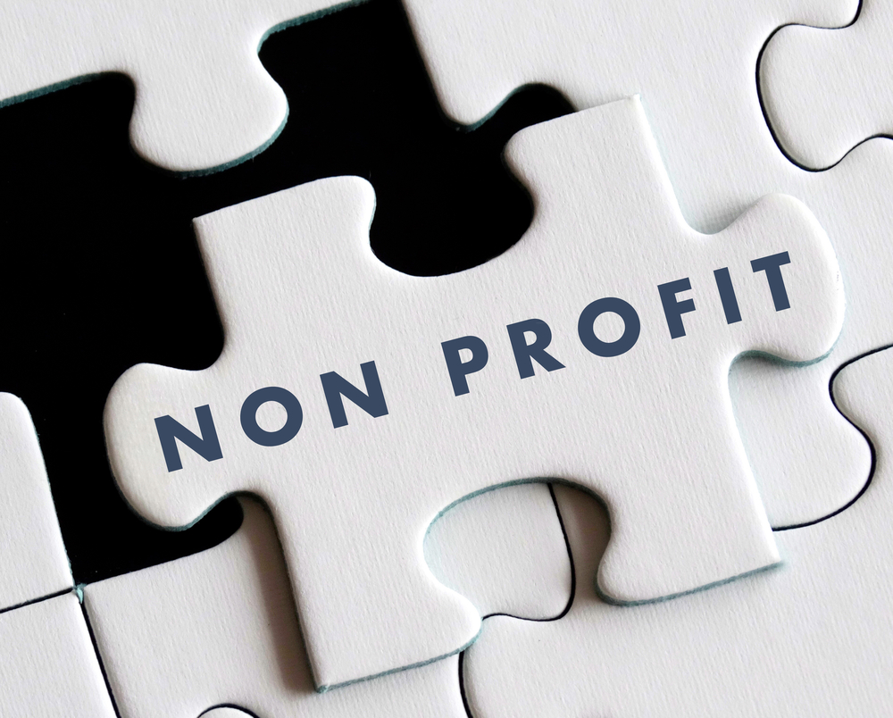 non profit business
