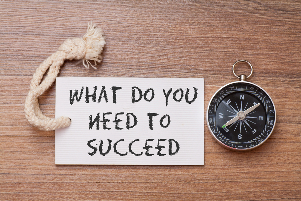 what you need to succeed