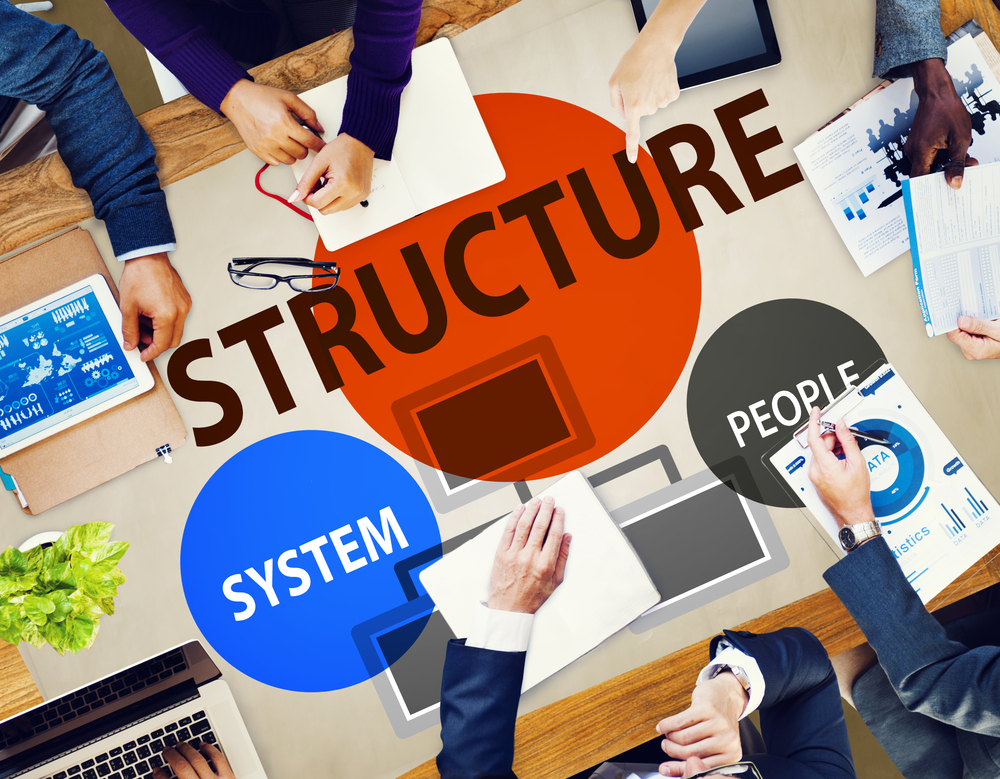 understand business structure