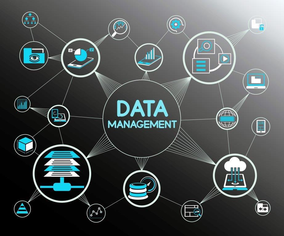 Data Management importance