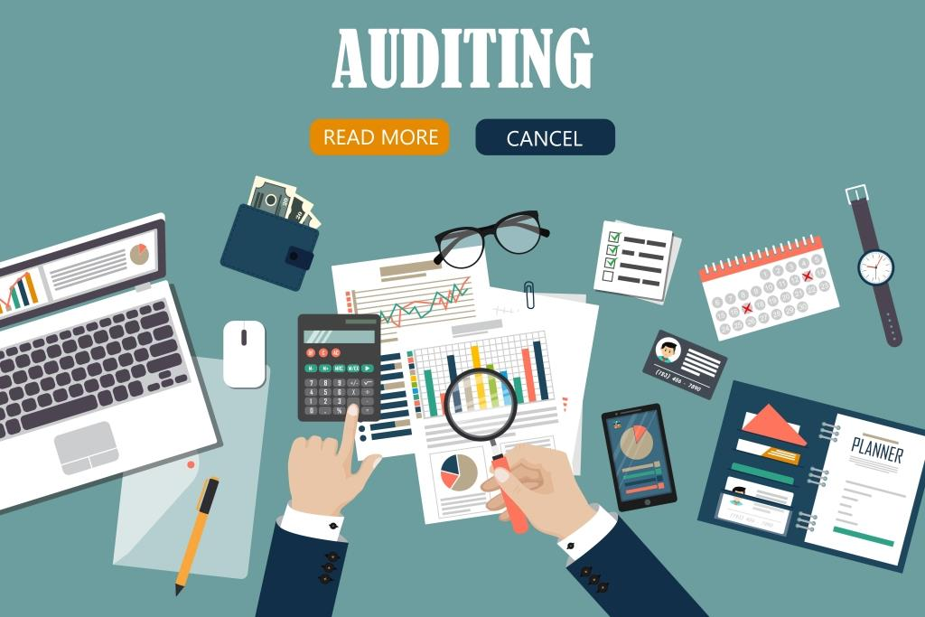 IRS business audit