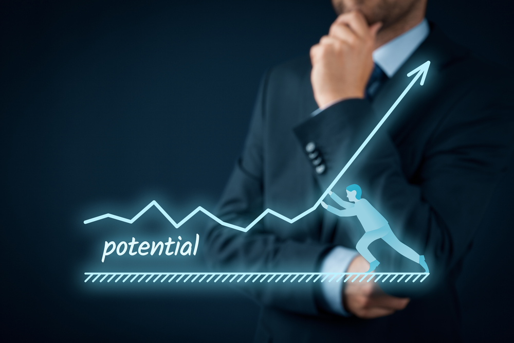 business potential guide