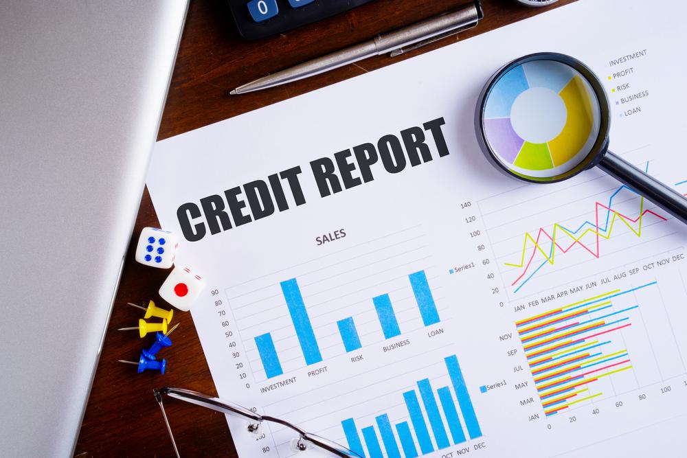 credit report guide